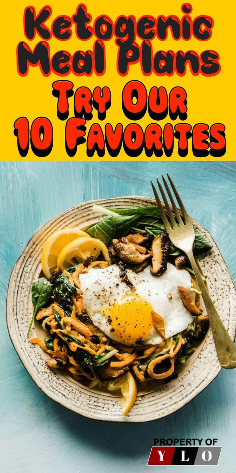 10 Easy Ketogenic Meals and Recipes. 10 Great Ketosis Recipes for Max Burn. These are great for Recipes, Weight Loss Food, Weight Loss Recipes, Healthy Meals, Weight Loss Snack Recipes, Weight Loss Dinner Recipes, Weight Loss Dessert Recipes, Weight Loss Low Carb Recipes, Weight Loss Lunch Recipes, Weight Loss Breakfast Recipes.