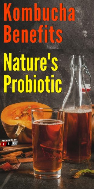 Kombucha Benefits Nature's Probiotic