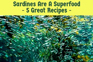 Sardines Are A Superfood – 5 Great Recipes