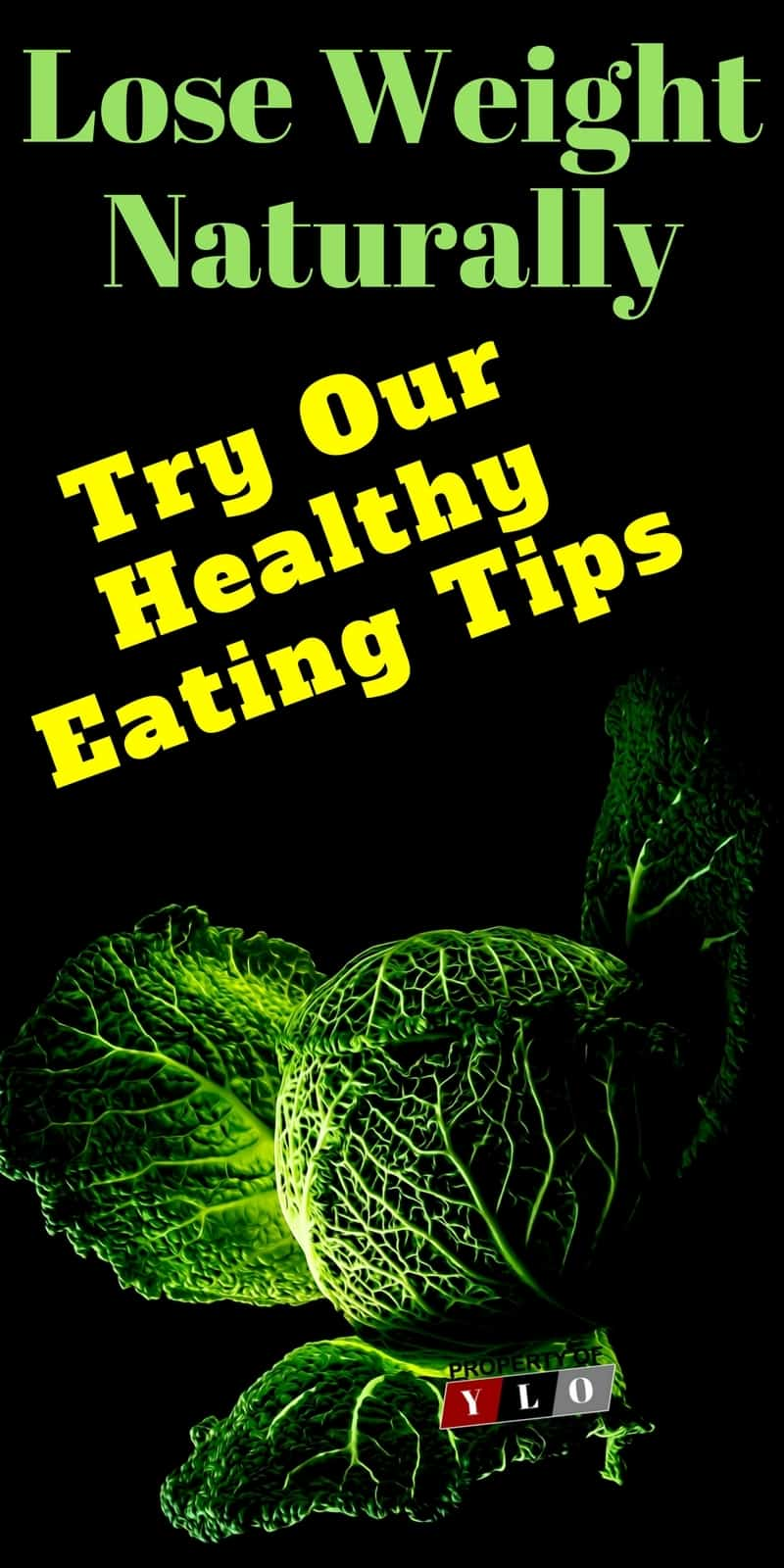 The Natural Treatment for Weight Loss is Healthy Eating | Poor Eating Habits Can Be A Disaster | Weight Loss | Weight Loss Foods | Weight Loss Foods Recipes | Weight Loss Foods Fast | Weight Loss Foods Recipes Fat Burning | Weight Loss Foods Recipes Meals | Weight Loss Foods Recipes Diet Plans | Weight Loss Foods Recipes | ARoadtoTravel.com