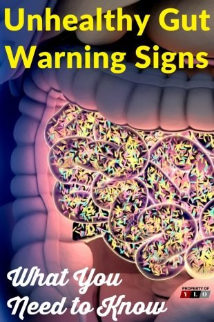 Unhealthy Gut Warning Signs and Cures 1