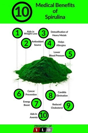 10 Spirulina Benefits from Natures Superfood 2