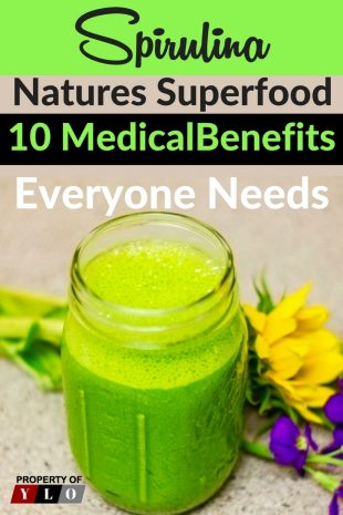 10 Spirulina Benefits from Natures Superfood 3