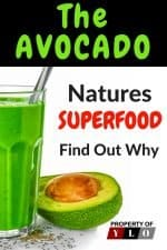 Avocado Benefits You Can't Ignore 3