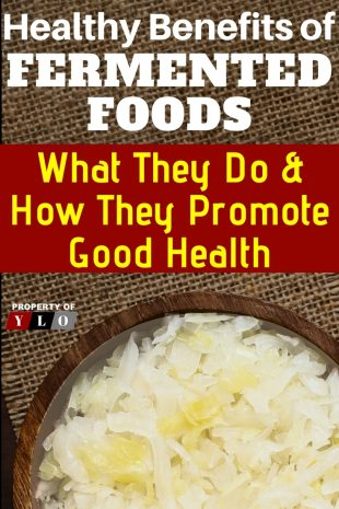 Healthy Benefits of Fermented Foods