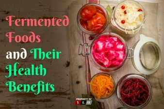 Fermented Foods & Their Health Benefits