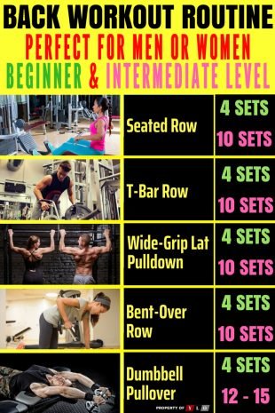 Effective Back Workouts For Beginners Info
