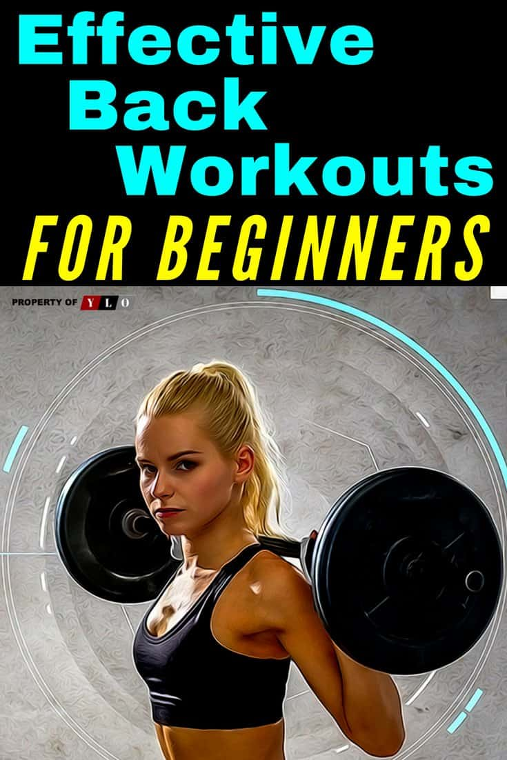Effective Back Workouts For Beginners 1