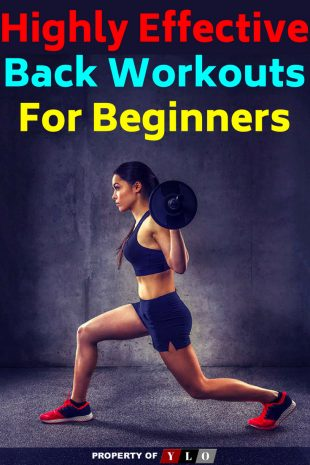 Effective Back Workouts For Beginners 2