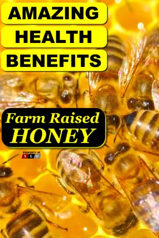 Amazing Health Benefits Farm Raised Honey