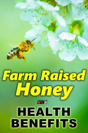 Farm Raised Honey Health Benefits2