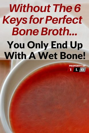 Without the 6 Keys for Perfect Bone Broth ... You Only Have A Wet Bone