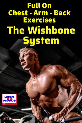 The Wishbone Exercise System for Strength Training