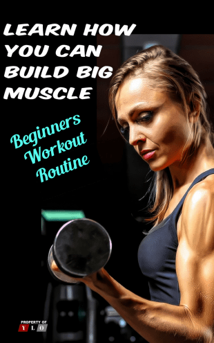 Learn How You Can Build Big Muscle - How to Build Muscle Mass
