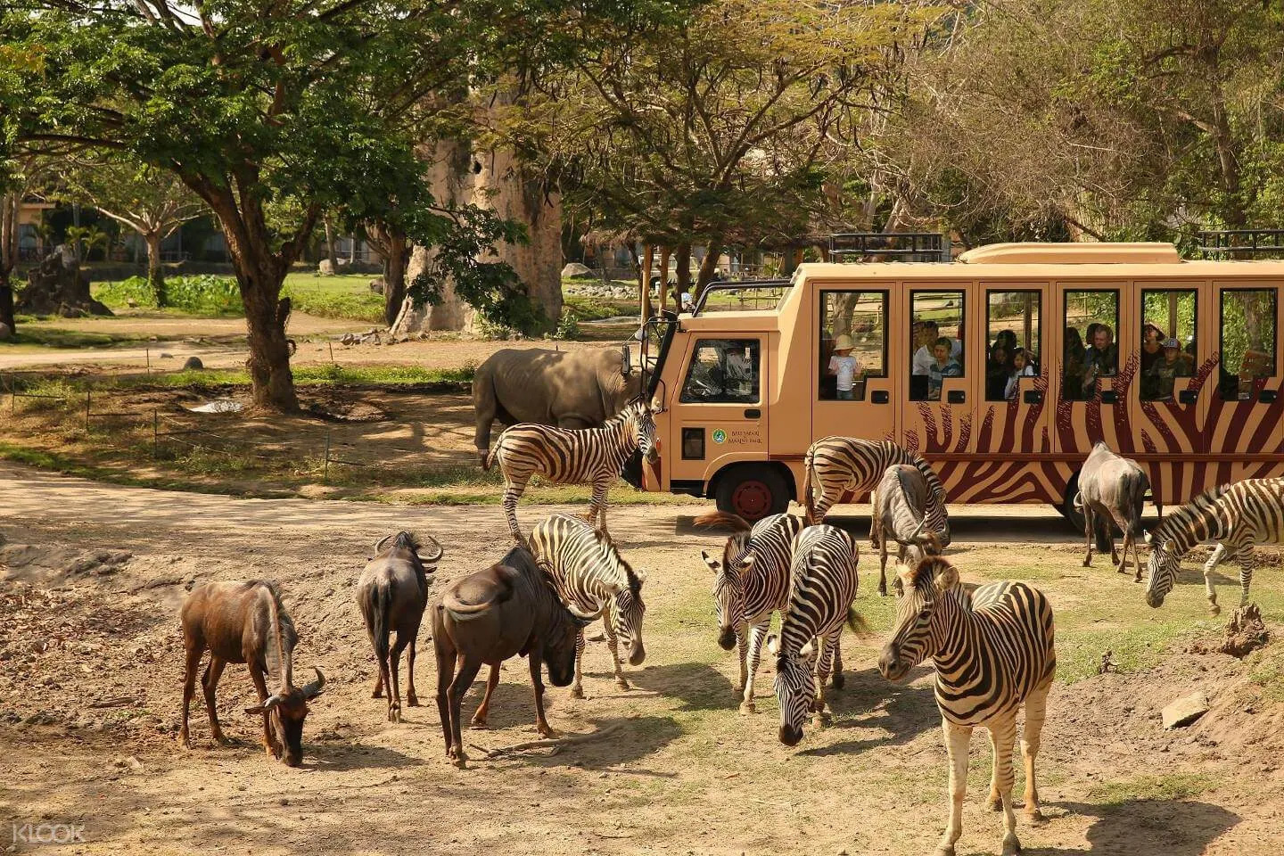 Visit the Bali Marine and Safari Park and Dine Out